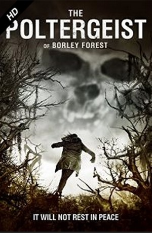 THE POLTERGEIST OF BORLEY FOREST. (DVD Art). ©RLJ Entertainment.