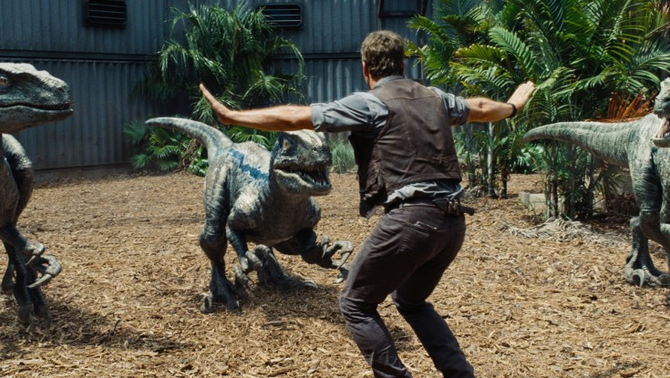 Photos: Chris Pratt is the Raptor Whisperer in 'Jurassic World'