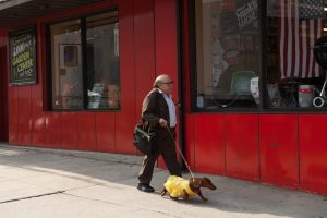 Danny DeVito stars in WIENER-DOG. ©Amazon Studios/IFC Films. CR: Linda Callerus