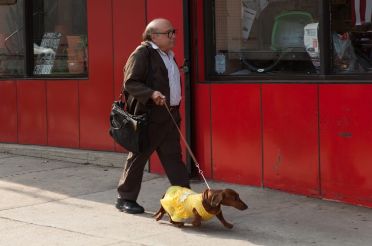 EXCLUSIVE: Todd Solondz Returns with 'Wiener-Dog'