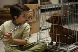 Keaton NIgel Cooke stars in WIENER-DOG. ©Amazon Studios-IfC Films. CR: Linda Callerus.