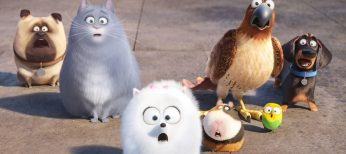 Photos: EXCLUSIVE: A Purr-fect Life for Lake Bell in 'Secret Life of Pets'