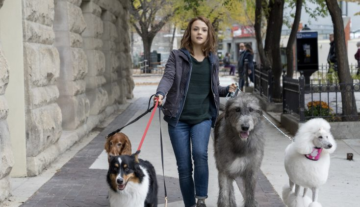 EXCLUSIVE: 'A Dog's Journey' Actress Says it's High Time for Girl-and-her-Dog Movie