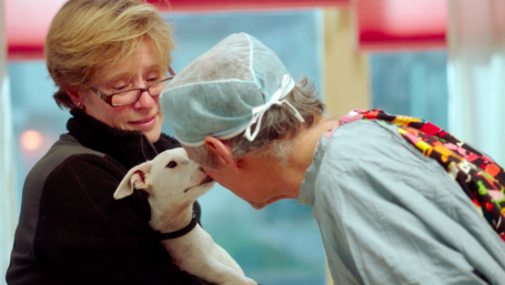 UPDATE: Doc on Unconventional Dog Vet is Available Now on Prime Video
